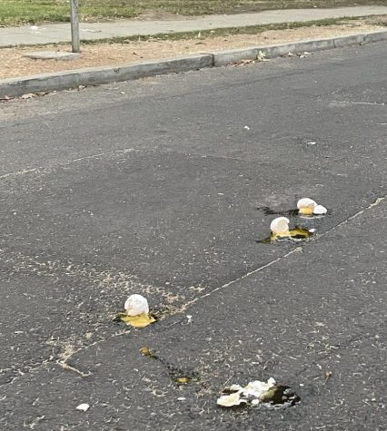 Letter to the Editors: Egg disaster response